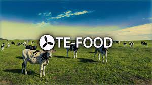 TE-FOOD – PRODUCT INSPECTION SYSTEM